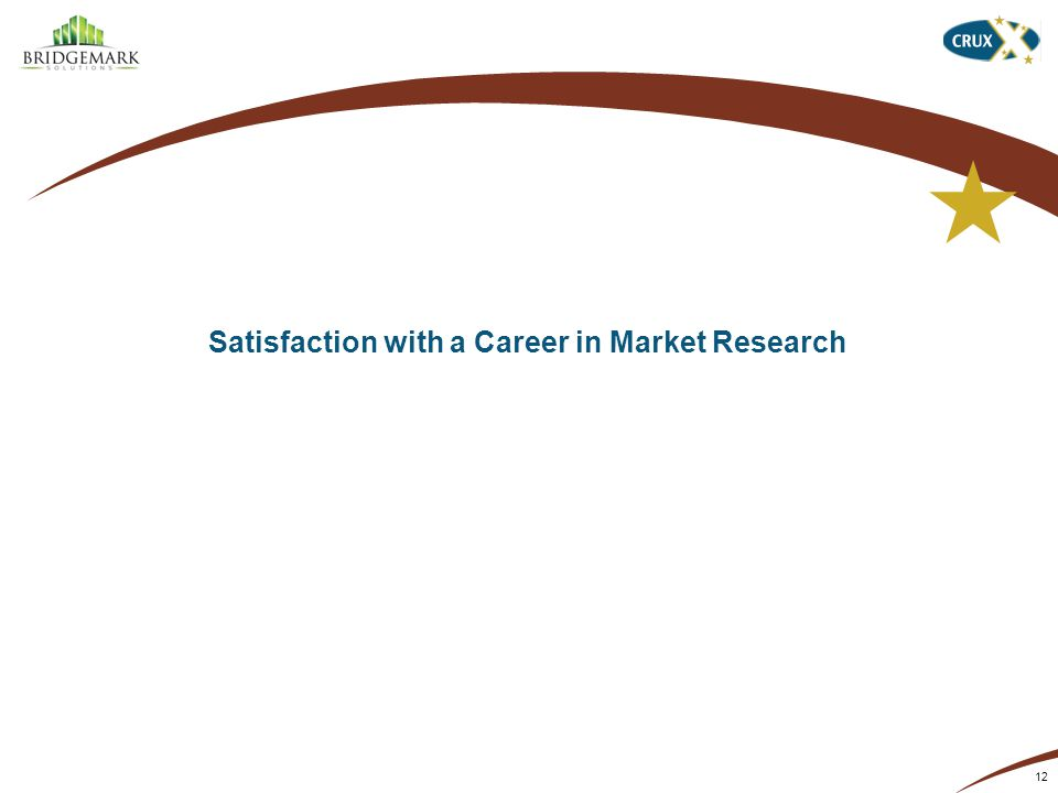 Satisfaction with a Career in Market Research 12