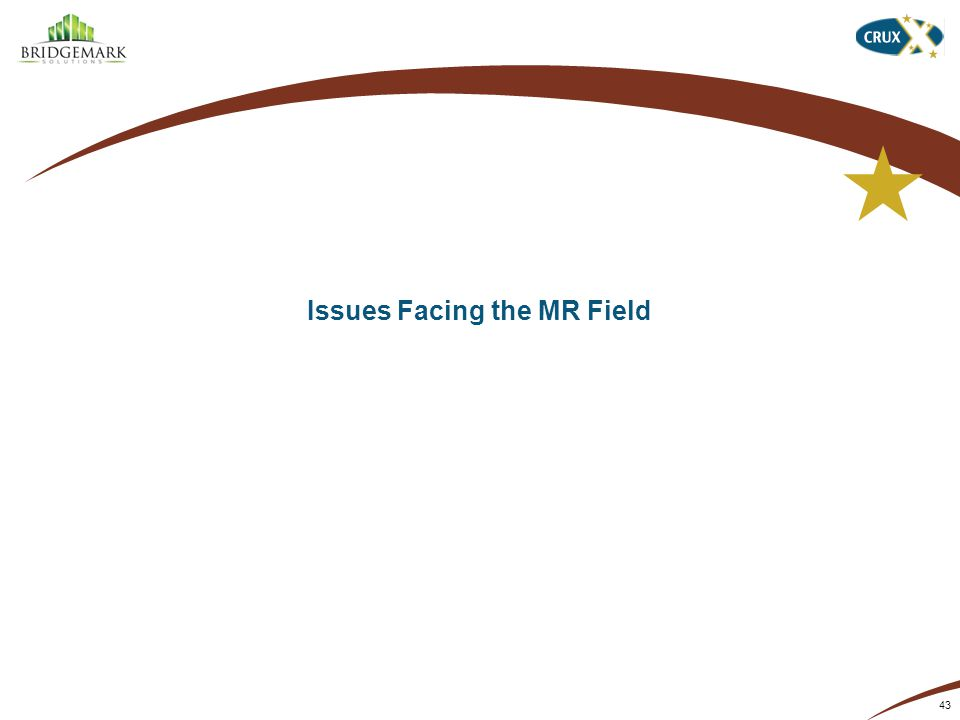 Issues Facing the MR Field 43