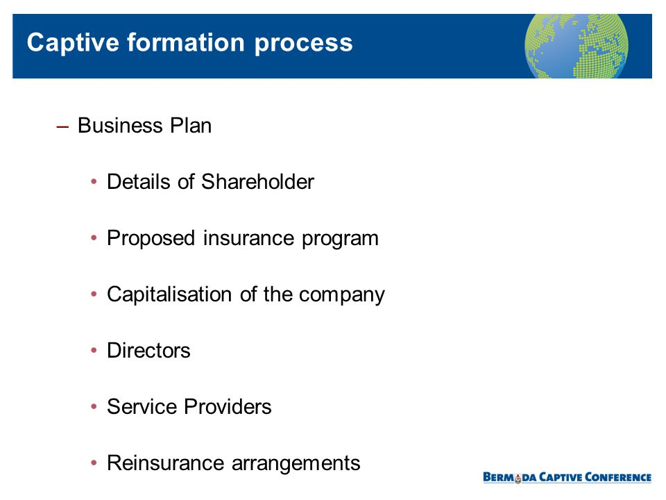 –Business Plan Details of Shareholder Proposed insurance program Capitalisation of the company Directors Service Providers Reinsurance arrangements Ca