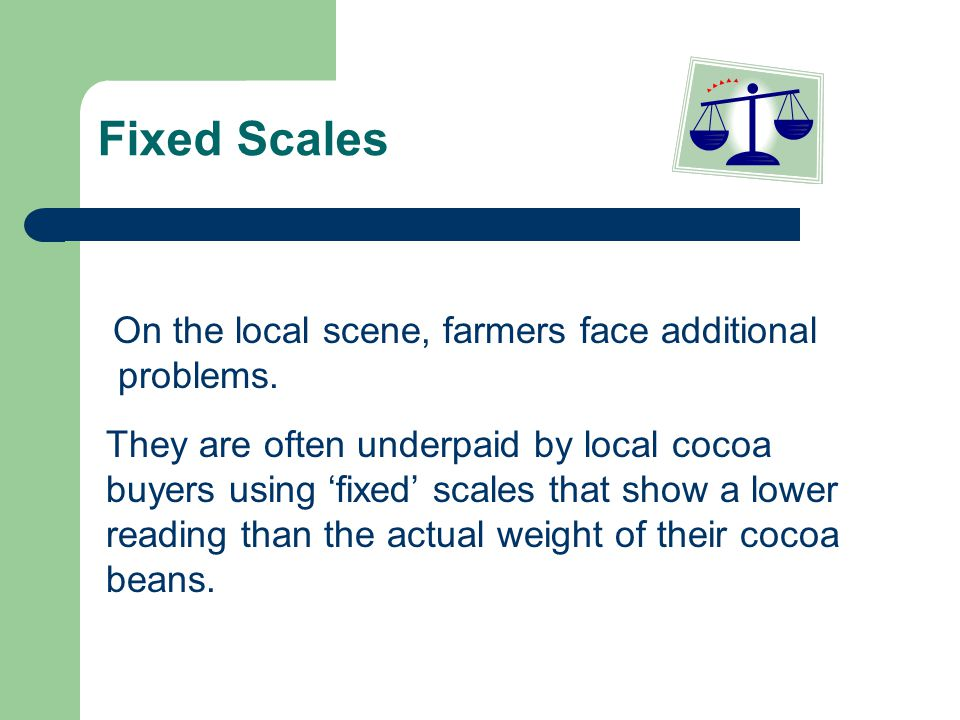 Fixed Scales On the local scene, farmers face additional problems. They are often underpaid by local cocoa buyers using fixed scales that show a lower