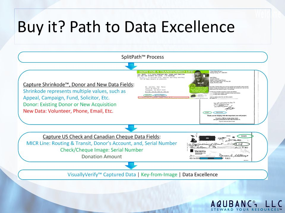 Buy it Path to Data Excellence