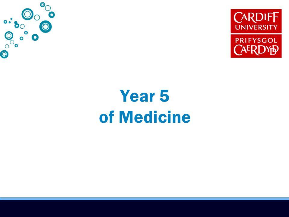 Year 5 of Medicine