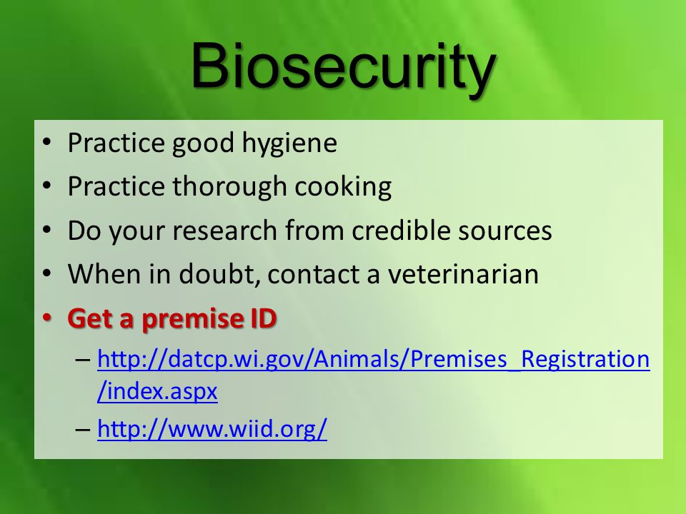 Biosecurity Practice good hygiene Practice thorough cooking Do your research from credible sources When in doubt, contact a veterinarian Get a premise