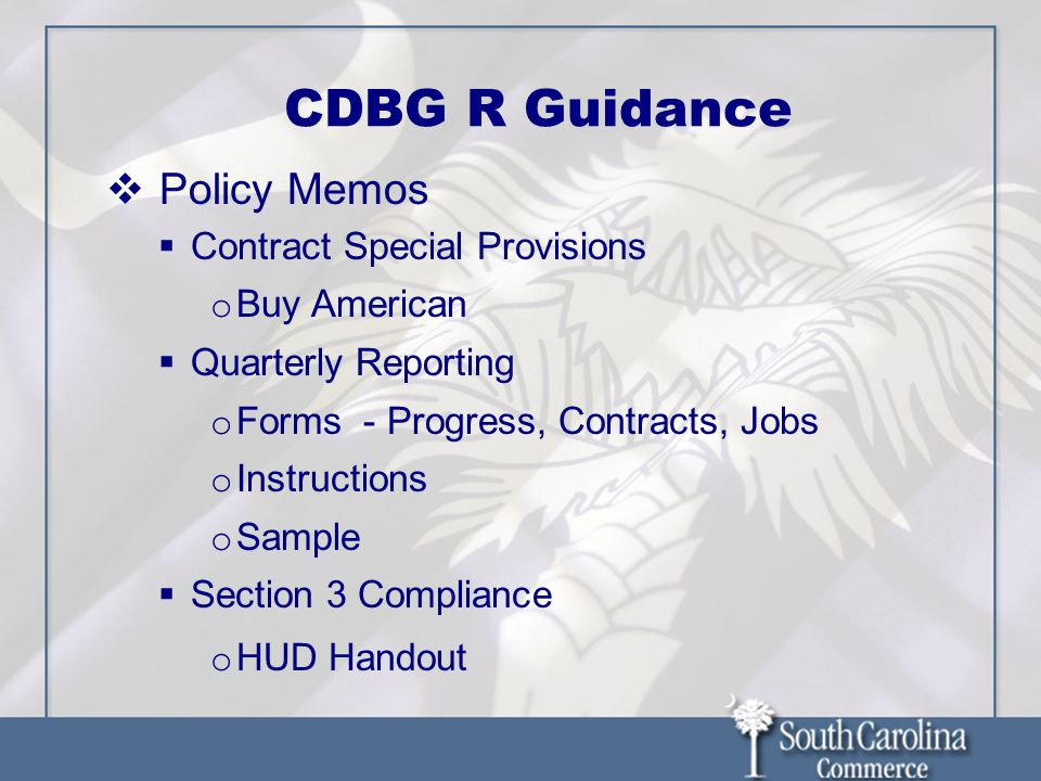 CDBG R Guidance Policy Memos Contract Special Provisions o Buy American Quarterly Reporting o Forms - Progress, Contracts, Jobs o Instructions o Sampl