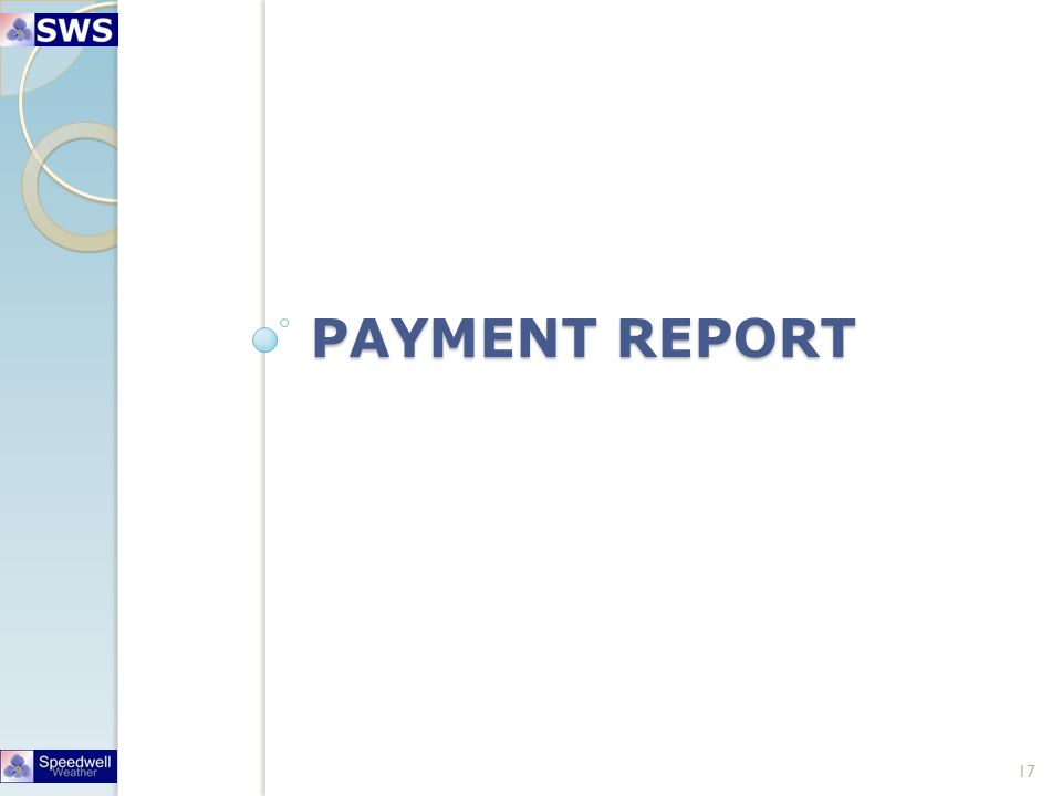 PAYMENT REPORT 17