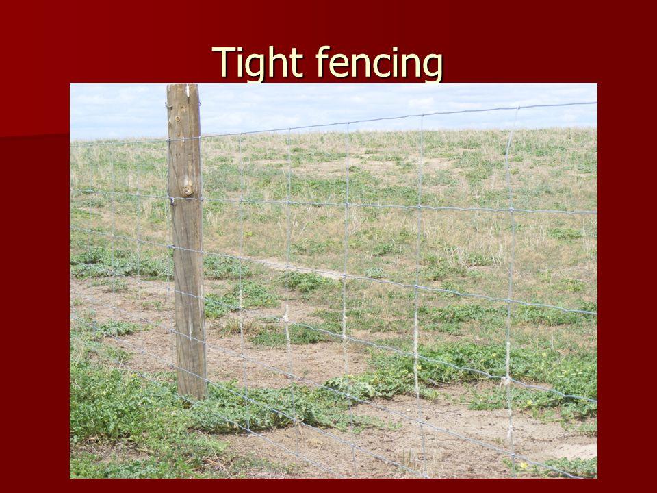 Tight fencing