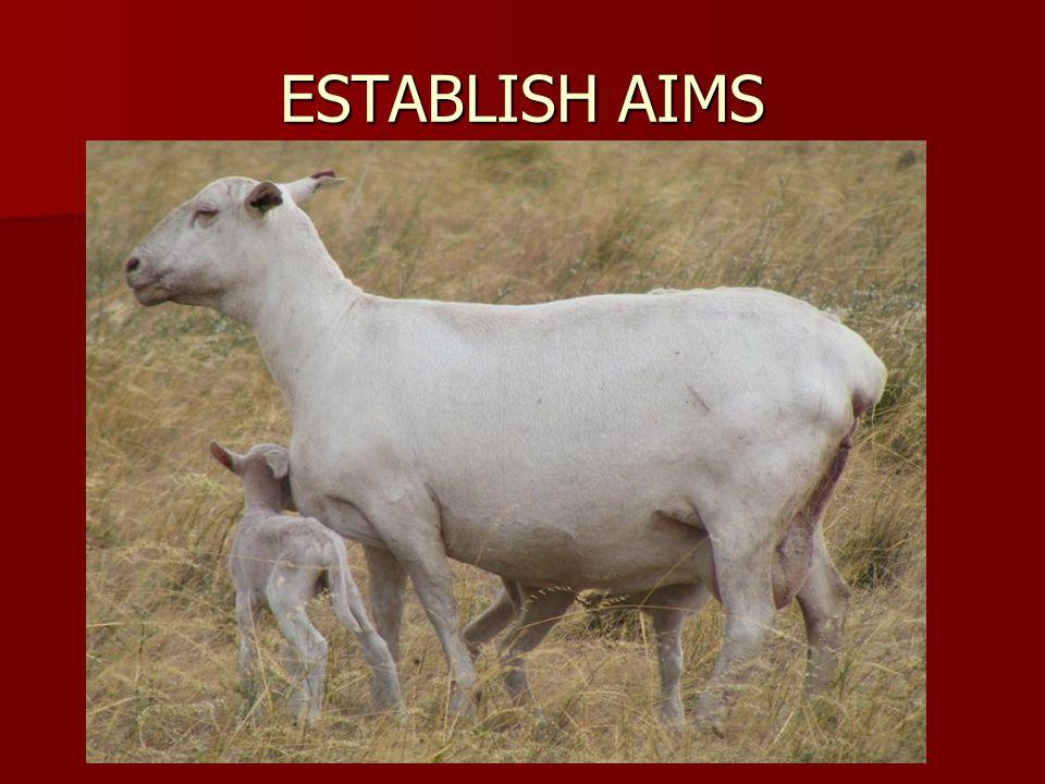ESTABLISH AIMS