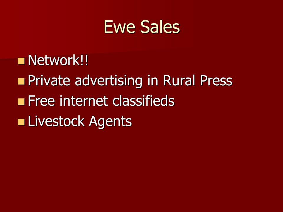 Ewe Sales Network!. Network!.