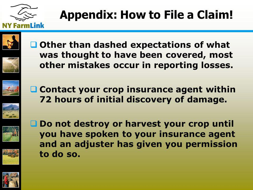 30 Appendix: How to File a Claim! Other than dashed expectations of what was thought to have been covered, most other mistakes occur in reporting loss