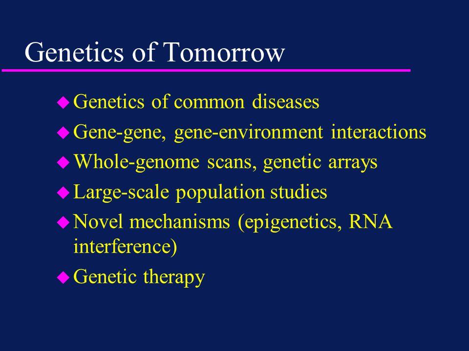 Genetics of Tomorrow u Genetics of common diseases u Gene-gene, gene-environment interactions u Whole-genome scans, genetic arrays u Large-scale population studies u Novel mechanisms (epigenetics, RNA interference) u Genetic therapy