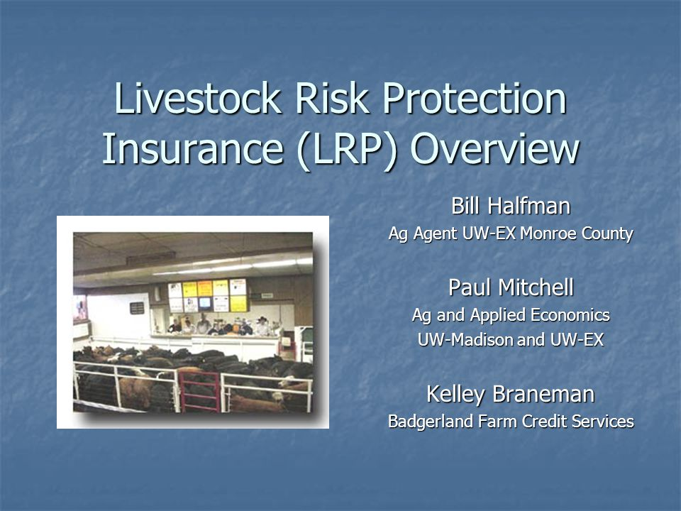Livestock Risk Protection Insurance (LRP) Overview Bill Halfman Ag Agent UW-EX Monroe County Paul Mitchell Ag and Applied Economics UW-Madison and UW-EX Kelley Braneman Badgerland Farm Credit Services