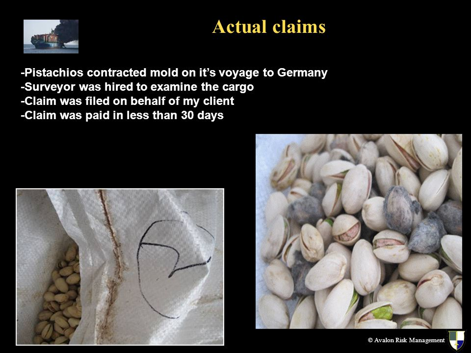 Actual claims © Avalon Risk Management -Pistachios contracted mold on its voyage to Germany -Surveyor was hired to examine the cargo -Claim was filed on behalf of my client -Claim was paid in less than 30 days