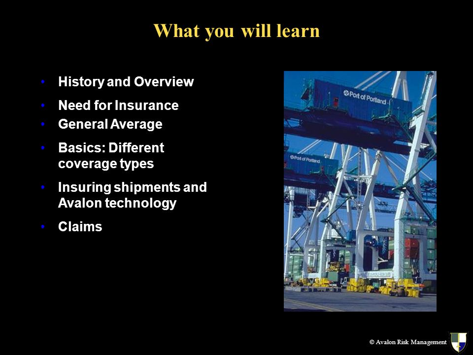 What you will learn © Avalon Risk Management History and Overview Need for Insurance General Average Basics: Different coverage types Insuring shipments and Avalon technology Claims