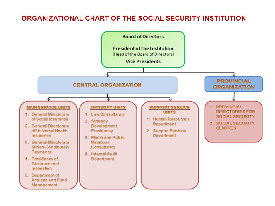 ORGANIZATIONAL CHART OF THE SOCIAL SECURITY INSTITUTION