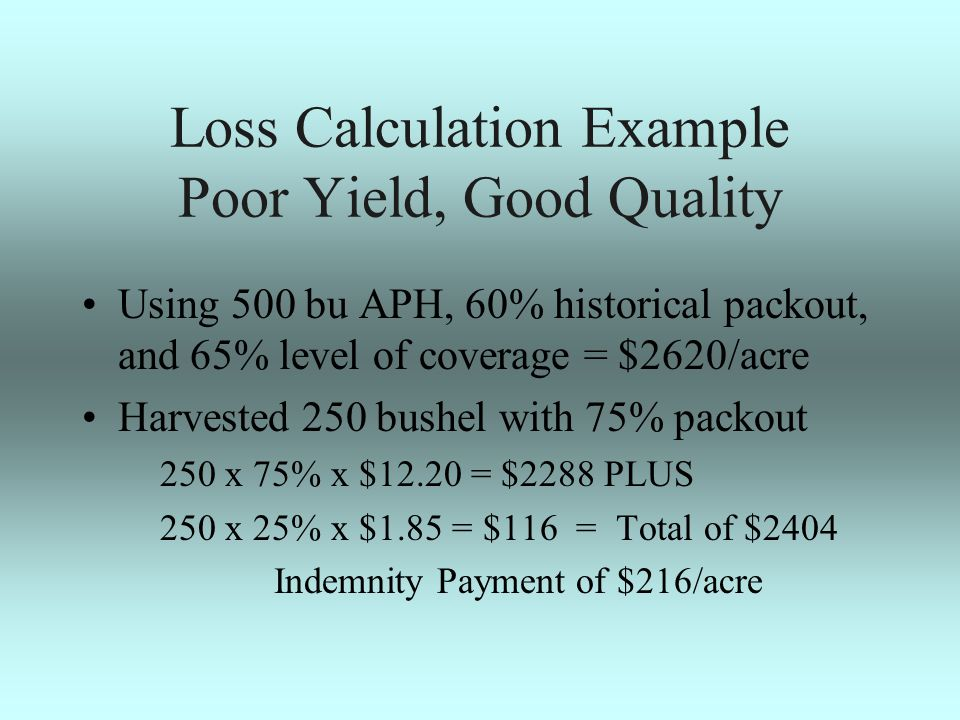 Loss Calculation Example Poor Yield, Good Quality Using 500 bu APH, 60% historical packout, and 65% level of coverage = $2620/acre Harvested 250 bushel with 75% packout 250 x 75% x $12.20 = $2288 PLUS 250 x 25% x $1.85 = $116 = Total of $2404 Indemnity Payment of $216/acre