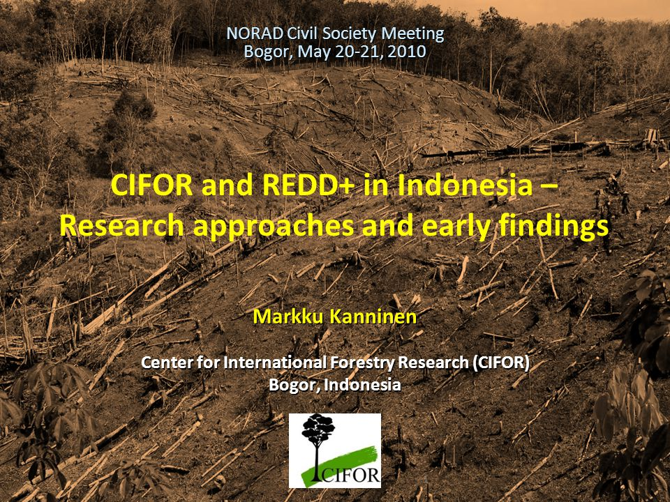 THINKING beyond the canopy CIFOR and REDD+ in Indonesia – Research approaches and early findings Markku Kanninen Center for International Forestry Res