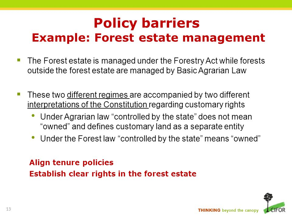 THINKING beyond the canopy Policy barriers Example: Forest estate management The Forest estate is managed under the Forestry Act while forests outside