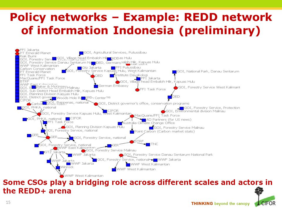 THINKING beyond the canopy Policy networks – Example: REDD network of information Indonesia (preliminary) Some CSOs play a bridging role across differ