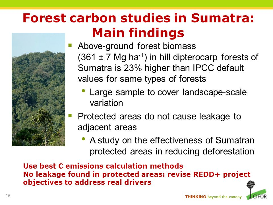 THINKING beyond the canopy Forest carbon studies in Sumatra: Main findings Above-ground forest biomass (361 ± 7 Mg ha -1 ) in hill dipterocarp forests