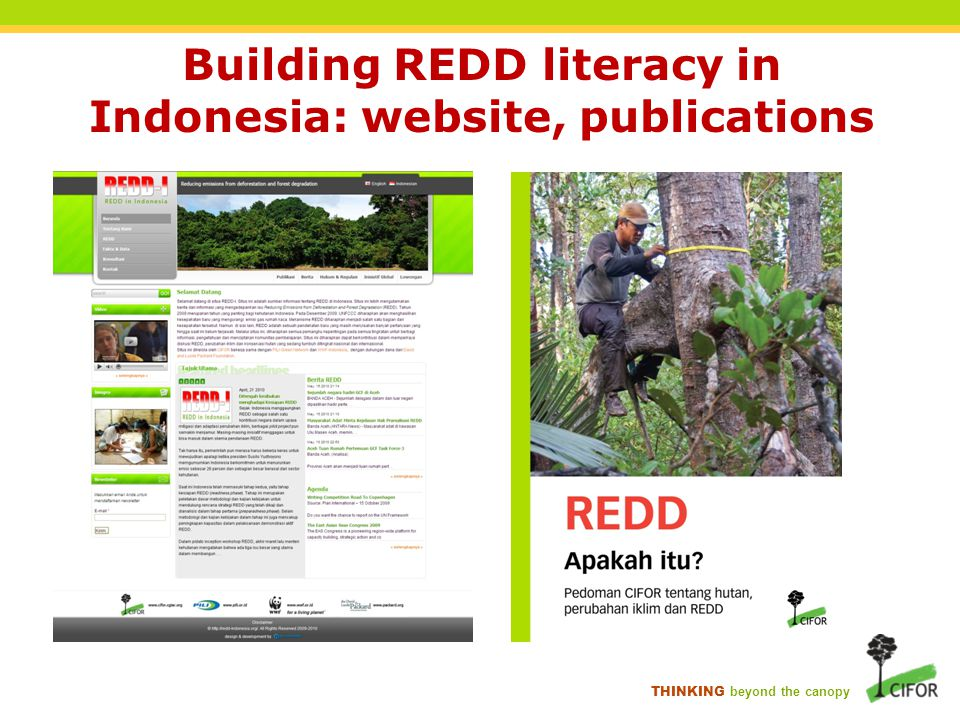 THINKING beyond the canopy Building REDD literacy in Indonesia: website, publications