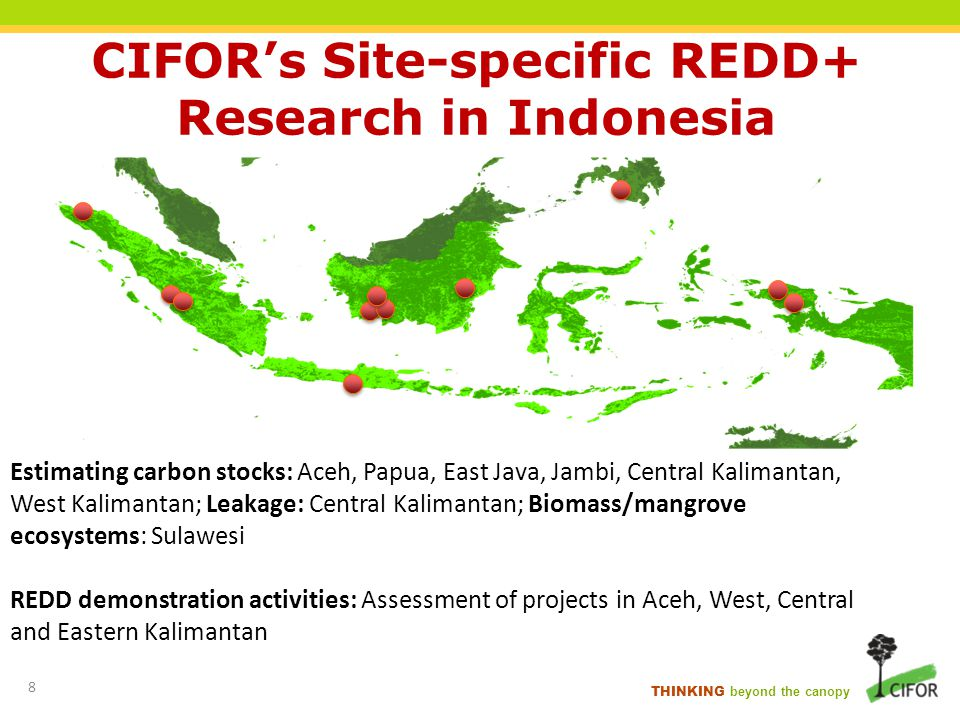 CIFORs Site-specific REDD+ Research in Indonesia Estimating carbon stocks: Aceh, Papua, East Java, Jambi, Central Kalimantan, West Kalimantan; Leakage