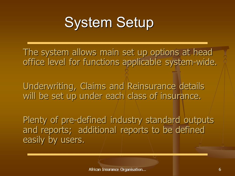 African Insurance Organisation...6 System Setup The system allows main set up options at head office level for functions applicable system-wide. The s