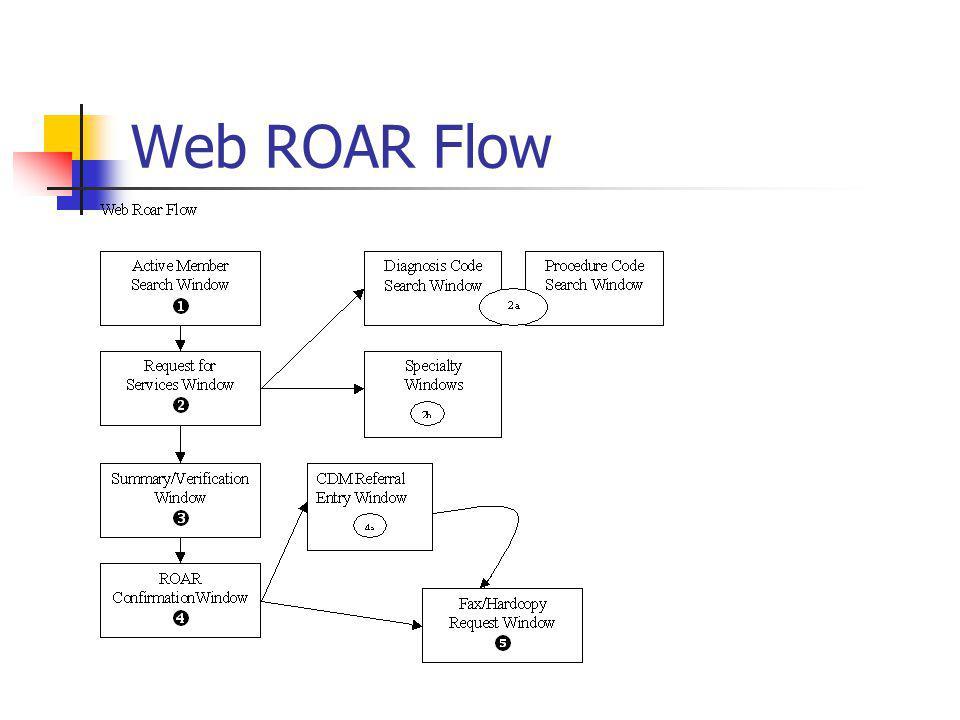 Web ROAR Flow