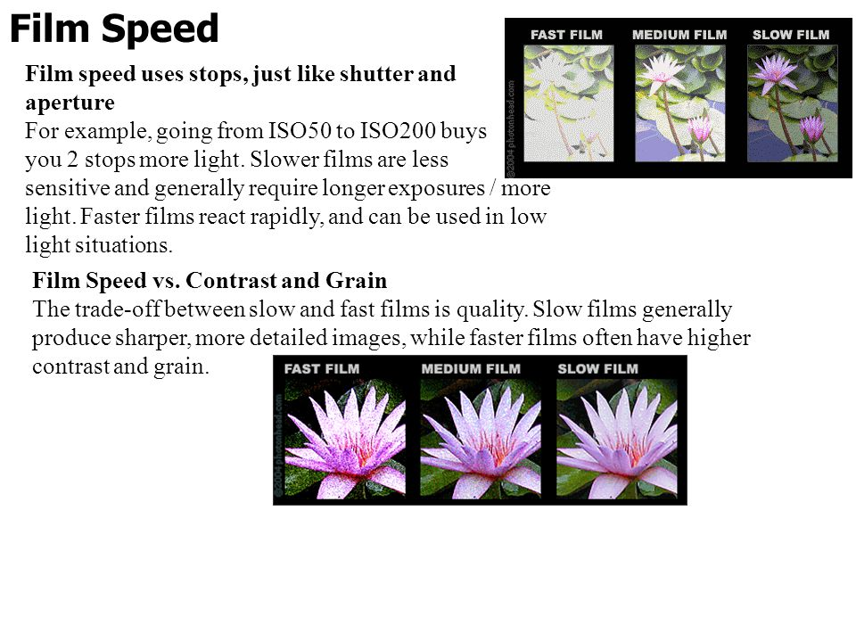 Film Speed Film speed uses stops, just like shutter and aperture For example, going from ISO50 to ISO200 buys you 2 stops more light. Slower films are