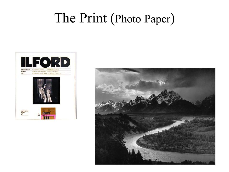 The Print ( Photo Paper )