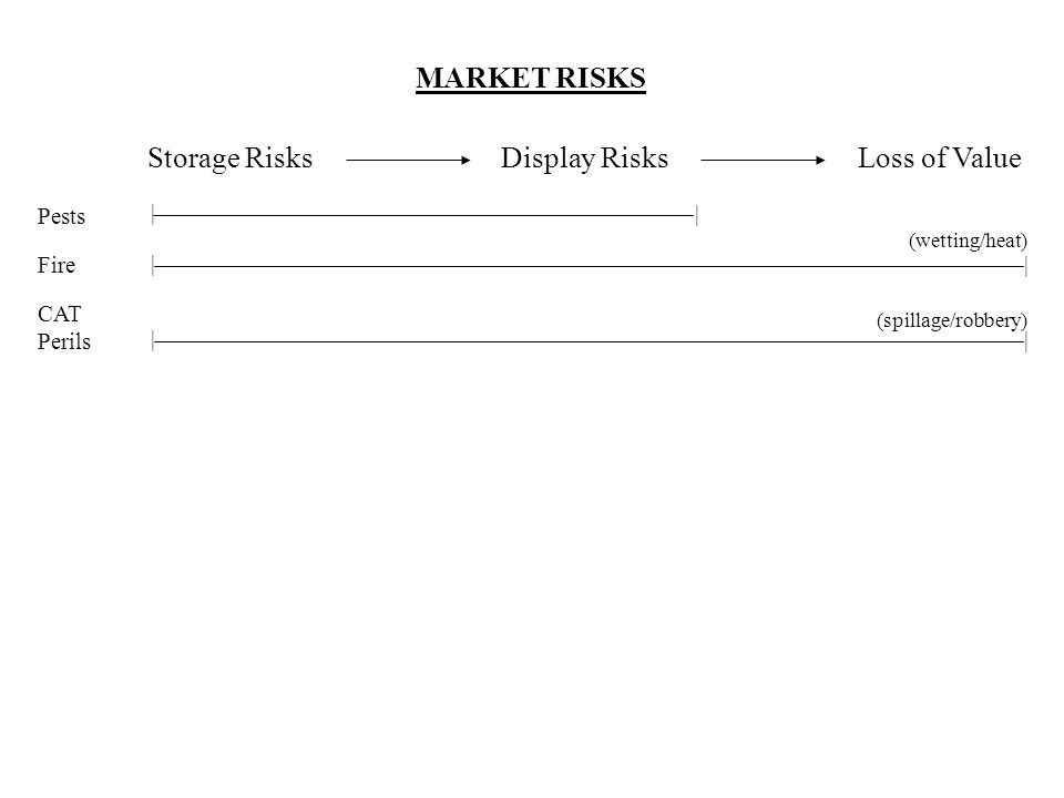 MARKET RISKS Storage Risks Display RisksLoss of Value Pests | | Fire | | CAT Perils (spillage/robbery) | | (wetting/heat)