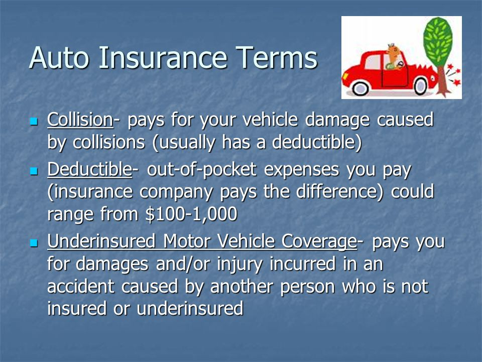 Auto Insurance Terms Collision- pays for your vehicle damage caused by collisions (usually has a deductible) Collision- pays for your vehicle damage caused by collisions (usually has a deductible) Deductible- out-of-pocket expenses you pay (insurance company pays the difference) could range from $100-1,000 Deductible- out-of-pocket expenses you pay (insurance company pays the difference) could range from $100-1,000 Underinsured Motor Vehicle Coverage- pays you for damages and/or injury incurred in an accident caused by another person who is not insured or underinsured Underinsured Motor Vehicle Coverage- pays you for damages and/or injury incurred in an accident caused by another person who is not insured or underinsured