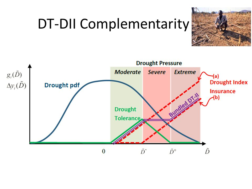 DT-DII Complementarity Net Benefit