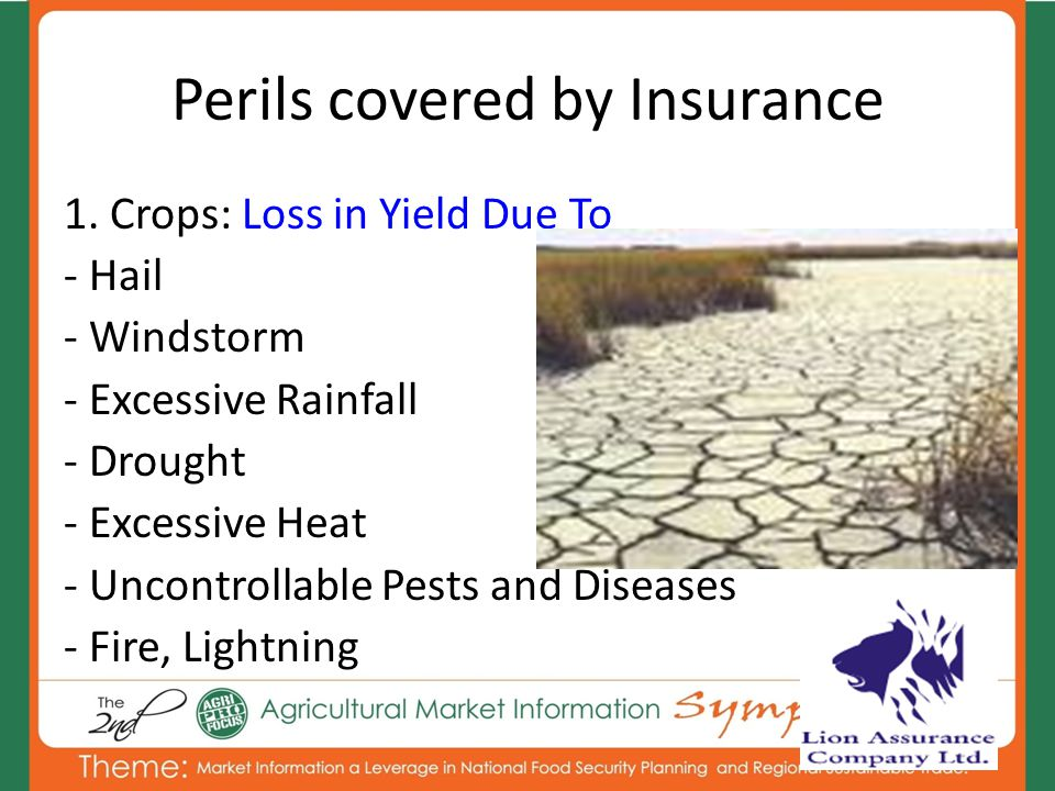 Perils covered by Insurance 1. Crops: Loss in Yield Due To - Hail - Windstorm - Excessive Rainfall - Drought - Excessive Heat - Uncontrollable Pests a