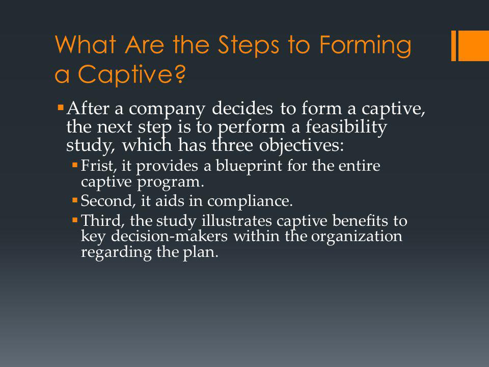 What Are the Steps to Forming a Captive.