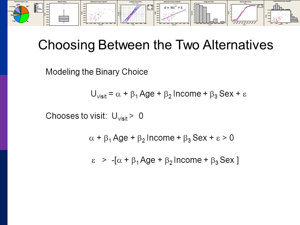 Modeling the Binary Choice U visit = + 1 Age + 2 Income + 3 Sex + Chooses to visit: U visit > 0 + 1 Age + 2 Income + 3 Sex + > 0 > -[ + 1 Age + 2 Income + 3 Sex ] Choosing Between the Two Alternatives