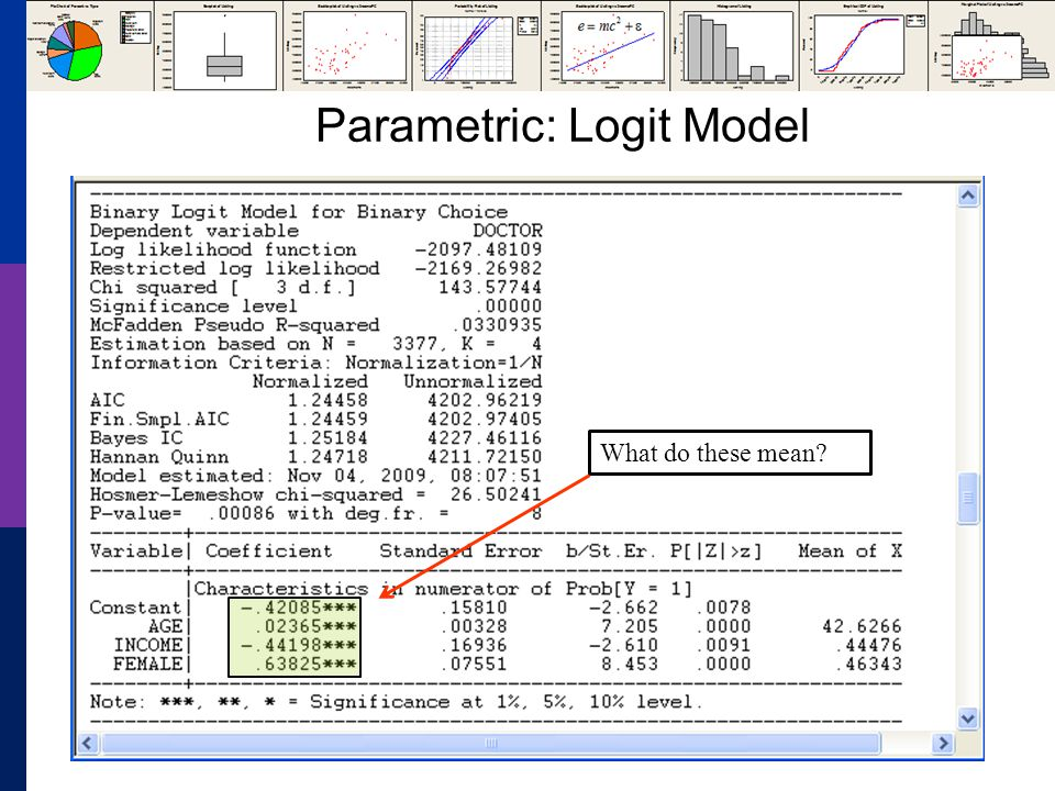 Parametric: Logit Model What do these mean