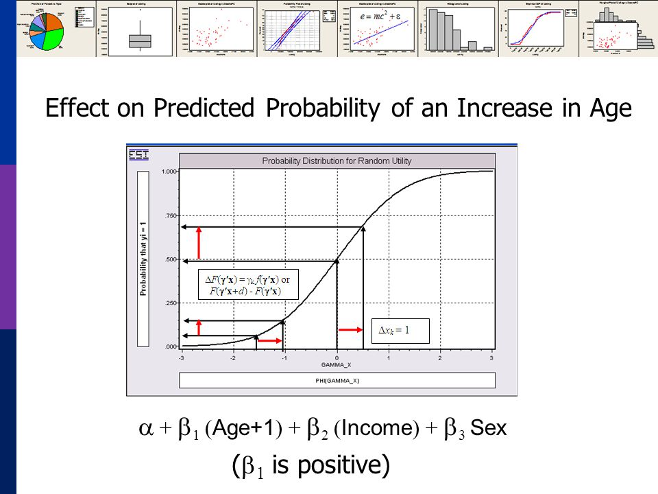 + 1 ( Age+1 ) + 2 ( Income ) + 3 Sex Effect on Predicted Probability of an Increase in Age ( 1 is positive)