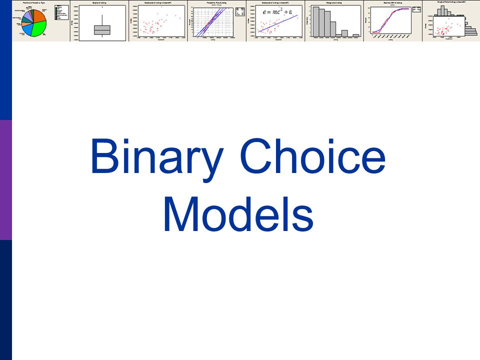Binary Choice Models
