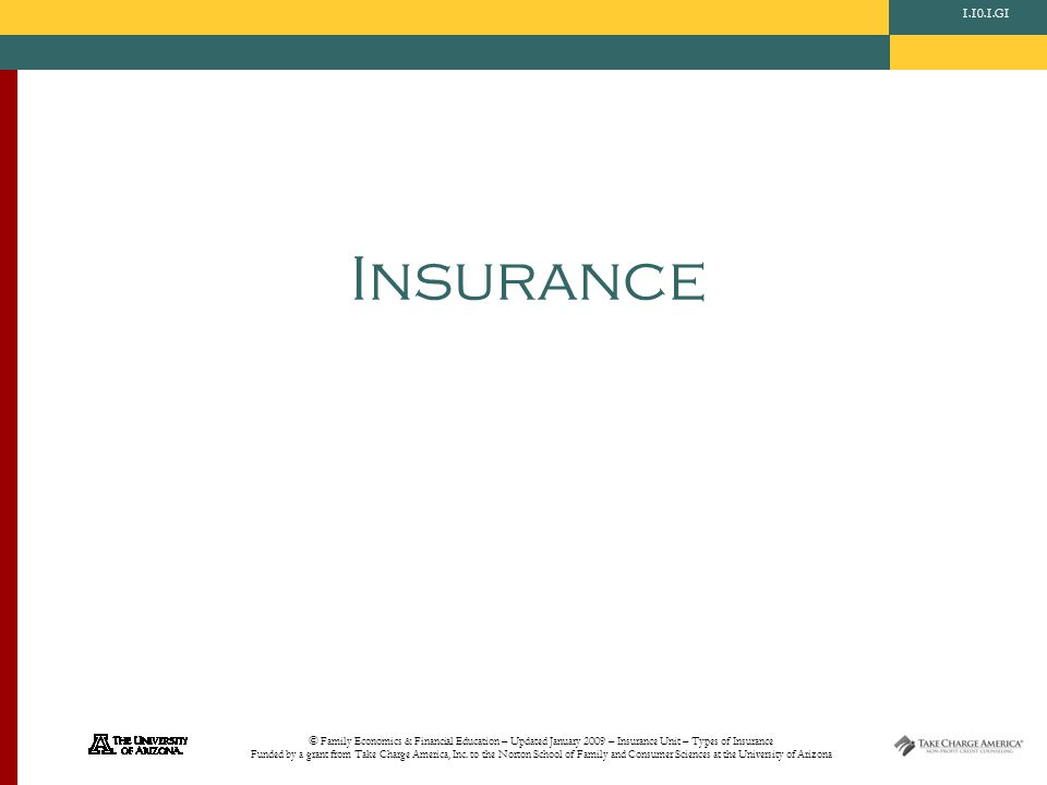 © Family Economics & Financial Education – Updated January 2009 – Insurance Unit – Types of Insurance Funded by a grant from Take Charge America, Inc.