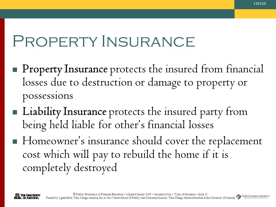 © Family Economics & Financial Education – Updated January 2009 – Insurance Unit – Types of Insurance – Slide 21 Funded by a grant from Take Charge America, Inc.