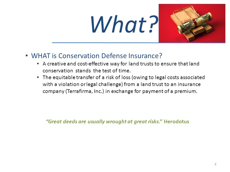 What? WHAT is Conservation Defense Insurance? A creative and cost-effective way for land trusts to ensure that land conservation stands the test of ti