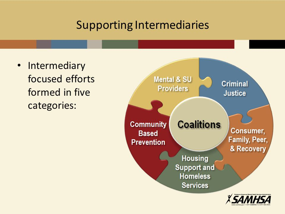 Supporting Intermediaries Intermediary focused efforts formed in five categories: