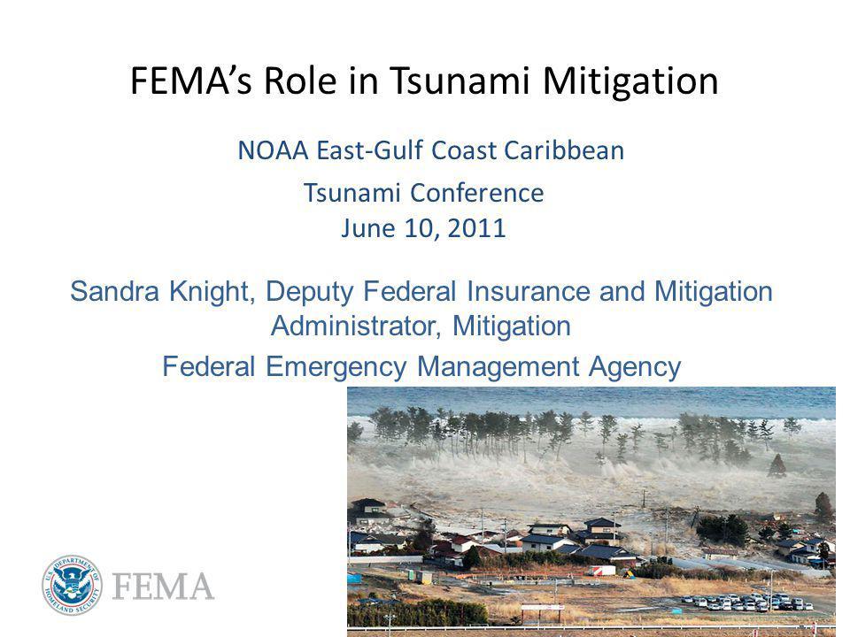 FEMAs Role in Tsunami Mitigation NOAA East-Gulf Coast Caribbean Tsunami Conference June 10, 2011 Sandra Knight, Deputy Federal Insurance and Mitigation Administrator, Mitigation Federal Emergency Management Agency
