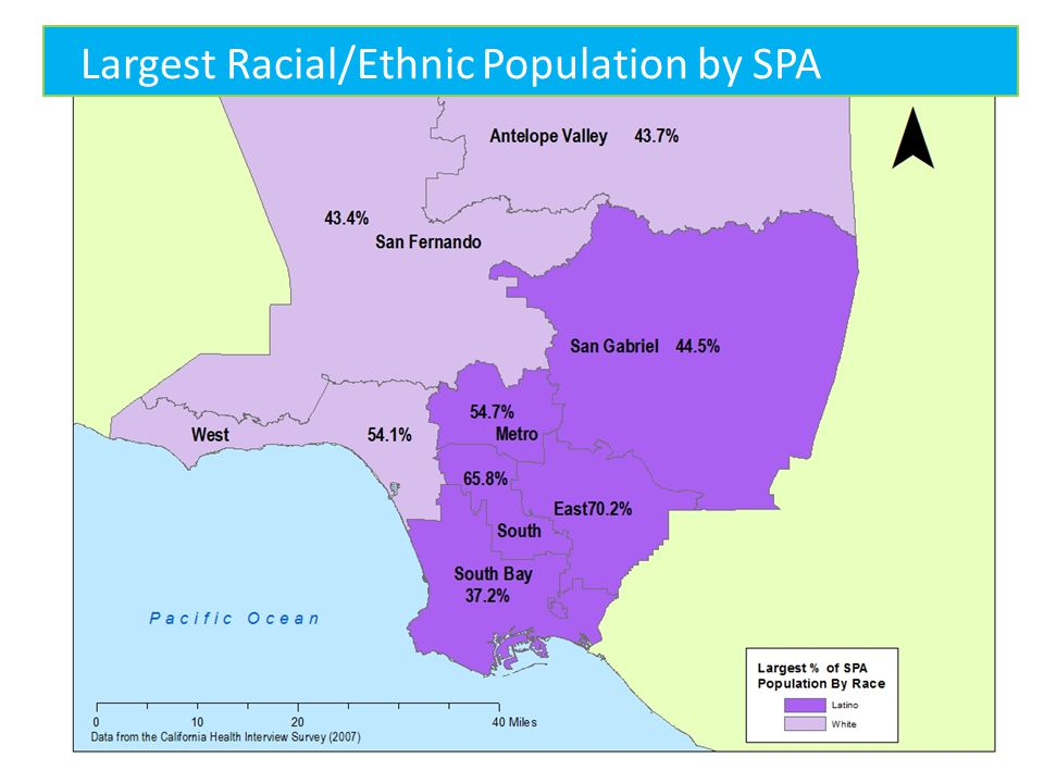 Largest Racial/Ethnic Population by SPA