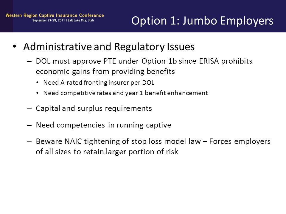 Option 1: Jumbo Employers Administrative and Regulatory Issues – DOL must approve PTE under Option 1b since ERISA prohibits economic gains from provid
