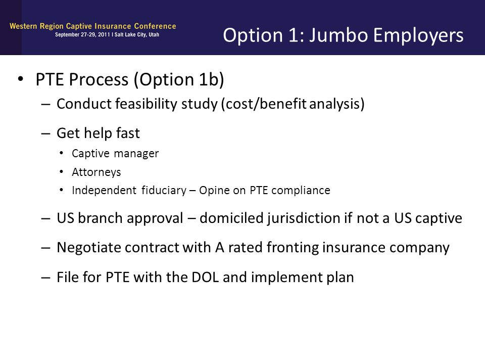 Option 1: Jumbo Employers PTE Process (Option 1b) – Conduct feasibility study (cost/benefit analysis) – Get help fast Captive manager Attorneys Indepe