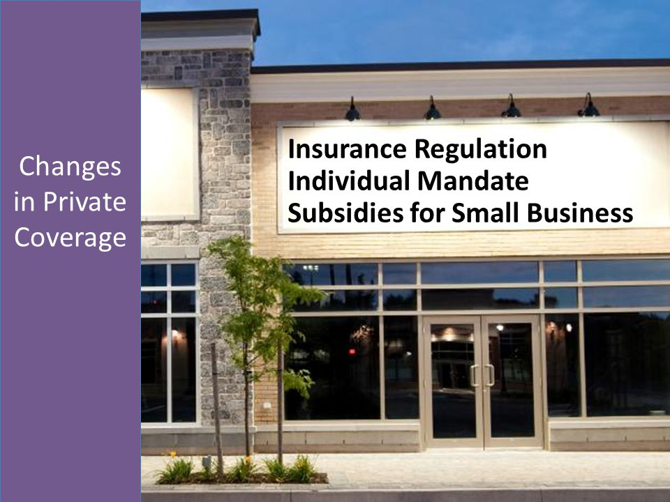 Insurance Regulation Individual Mandate Subsidies for Small Business Changes in Private Coverage