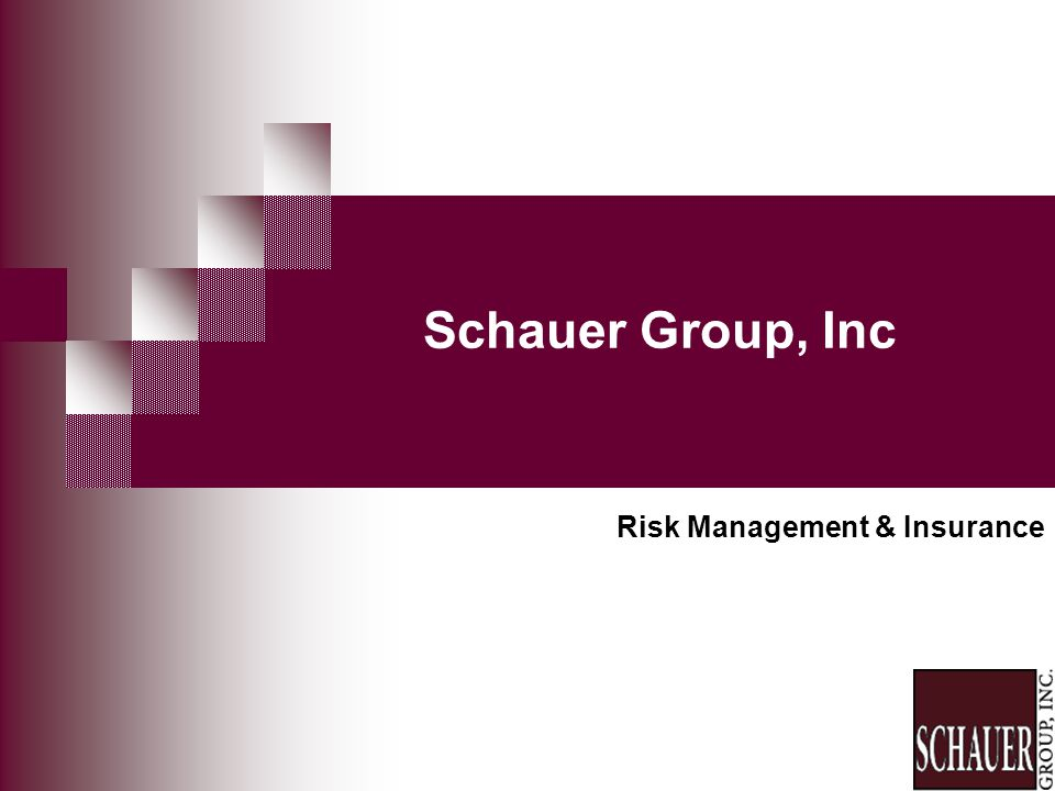 Schauer Group, Inc Risk Management & Insurance