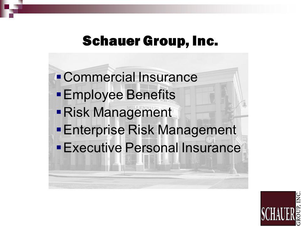 Commercial Insurance Employee Benefits Risk Management Enterprise Risk Management Executive Personal Insurance Schauer Group, Inc.