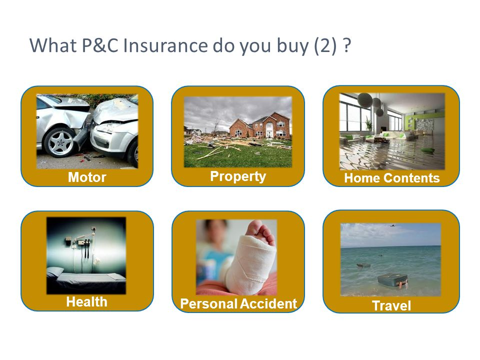 What P&C Insurance do you buy (2) ? Home Contents Personal Accident Travel Motor Health Property